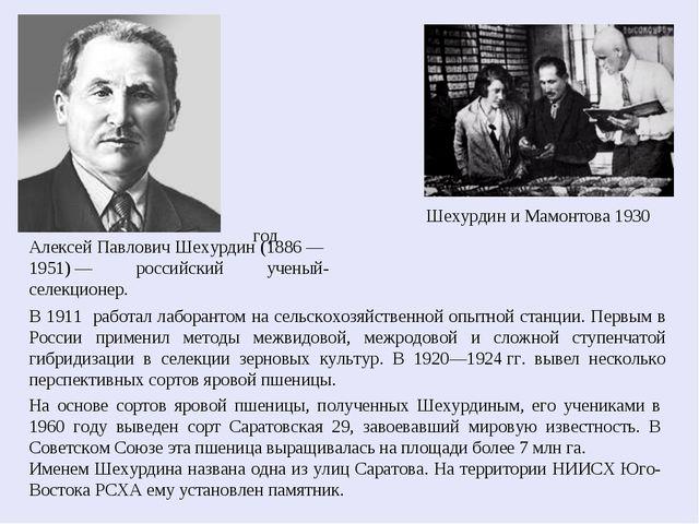 Шехурдин и Мамонтова 1930 год Алексей Павлович Шехурдин (1886— 1951)— росс...
