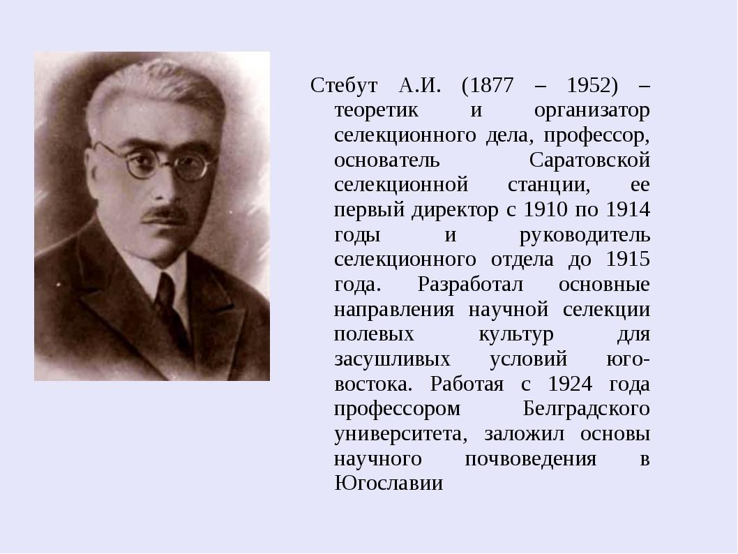 Стебут А.И. (1877 – 1952) – теоретик и организатор селекционного дела, профе...