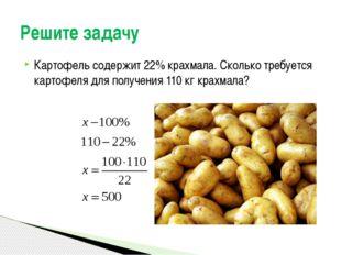 Картофель содержит 22% крахмала. Сколько требуется картофеля для получения 11