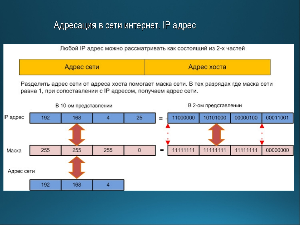 Адресация в сети интернет. IP адрес