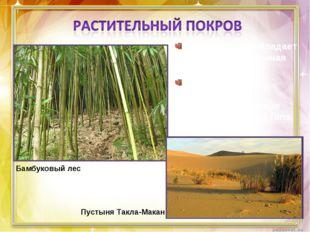 На западе преобладает степная и пустынная растительность. На востоке – листоп