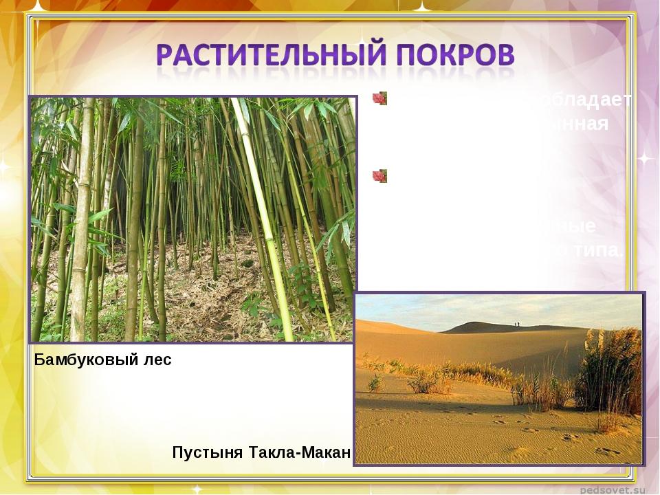 На западе преобладает степная и пустынная растительность. На востоке – листоп...