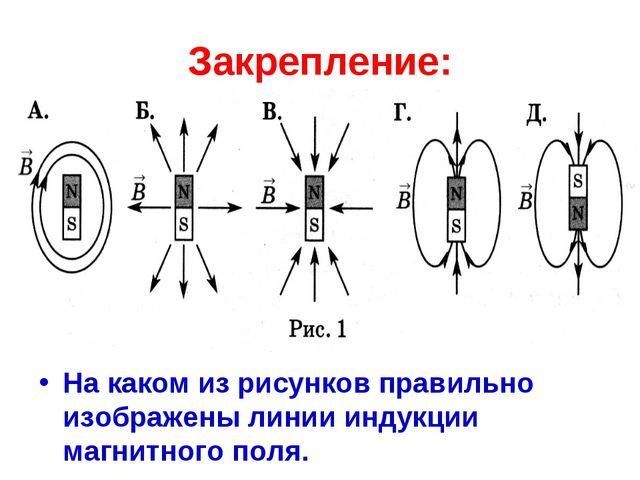 Закрепление: На каком из рисунков правильно изображены линии индукции магнитн...
