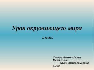 Урок окружающего мира 1 класс Учитель: Фомина Лилия Михайловна МБОУ «Новоильм