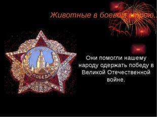 Они помогли нашему народу одержать победу в Великой Отечественной войне. Живо