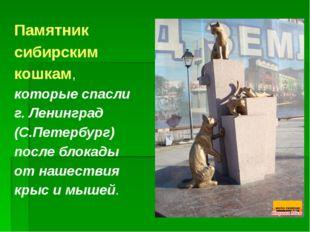 Памятник сибирским кошкам, которые спасли г. Ленинград (С.Петербург) после бл