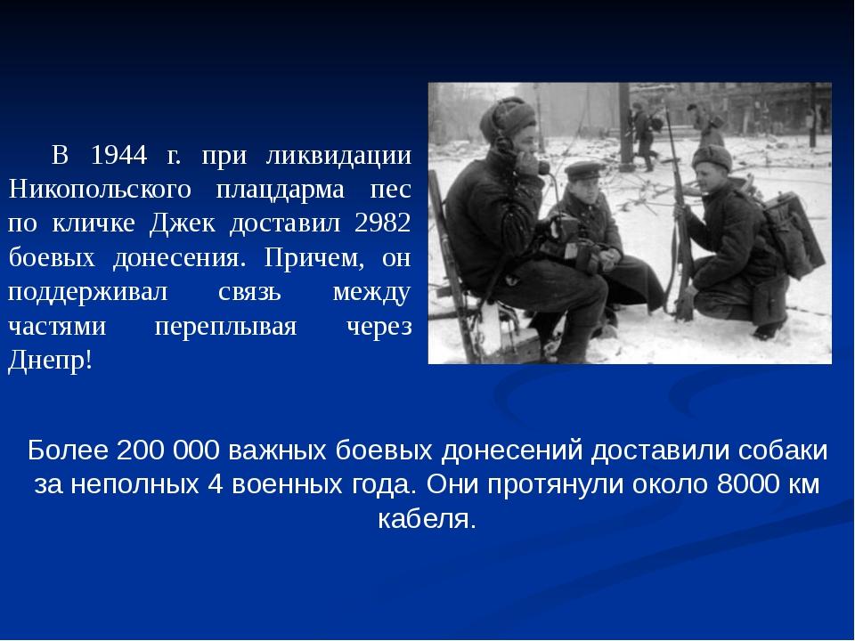 Более 200 000 важных боевых донесений доставили собаки за неполных 4 военных...