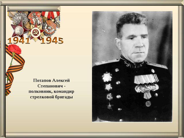 Потапов Алексей Степанович - полковник, командир стрелковой бригады