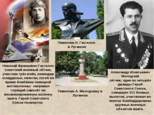 Николай Францевич Гастелло советский военный лётчик, участник трёх войн, кома