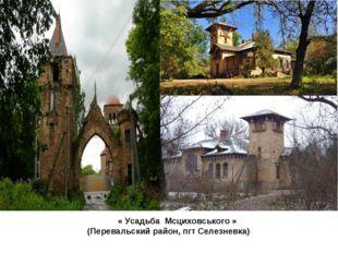« Усадьба Мсциховського » (Перевальский район, пгт Селезневка)