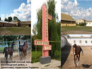 Деркульский конный завод (Беловодский район, с. Даниловка) территория Украины