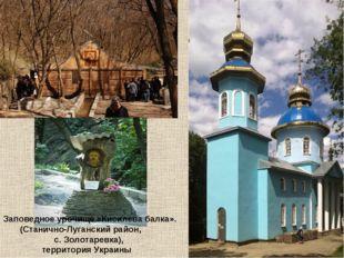 Заповедное урочище «Кисилева балка». (Станично-Луганский район, с. Золотаревк