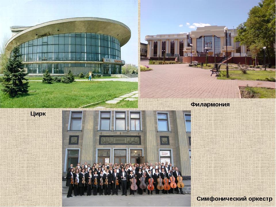 Филармония Симфонический оркестр Цирк