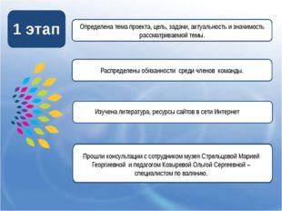 1 этап Распределены обязанности среди членов команды. Определена тема проект