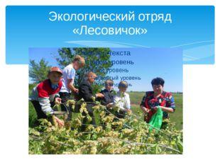Экологический отряд «Лесовичок»