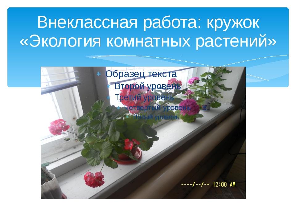 Внеклассная работа: кружок «Экология комнатных растений»