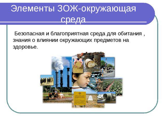 Элементы ЗОЖ-окружающая среда Безопасная и благоприятная среда для обитания ,...
