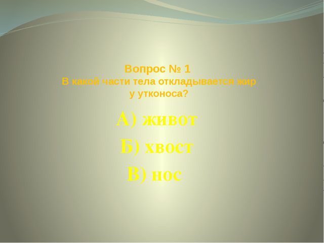 Вопрос № 1 В какой части тела откладывается жир у утконоса? А) живот Б) хвост...