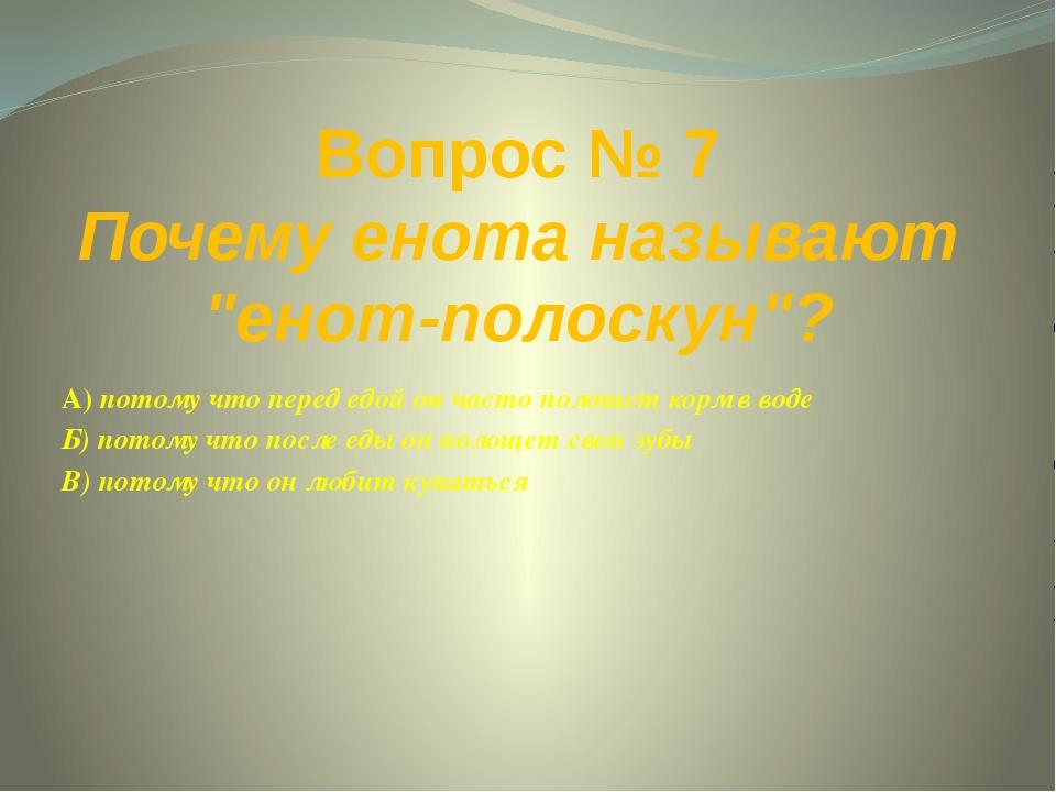 """Вопрос № 7 Почему енота называют """"енот-полоскун""""? А) потому что перед едой он..."""