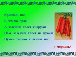 Красный нос В землю врос, А зеленый хвост снаружи Нам зеленый хвост не нужен