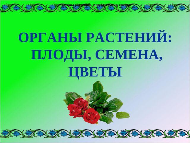 Органы растений: плоды, семена, цветы Органы растений: плоды, семена, цветы О...