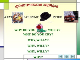 A FAT SAT ON MY IN THE WHY DO YOU , WILLY? WHY DO YOU CRY? WHY,WILLY? WHY, WI