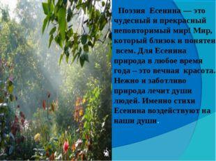 Поэзия Есенина — это чудесный и прекрасный неповторимый мир! Мир, который бл