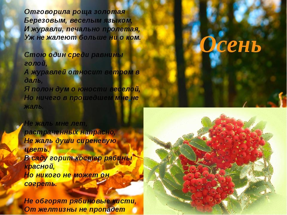 . Осень Отговорила роща золотая Березовым, веселым языком, И журавли, печальн...