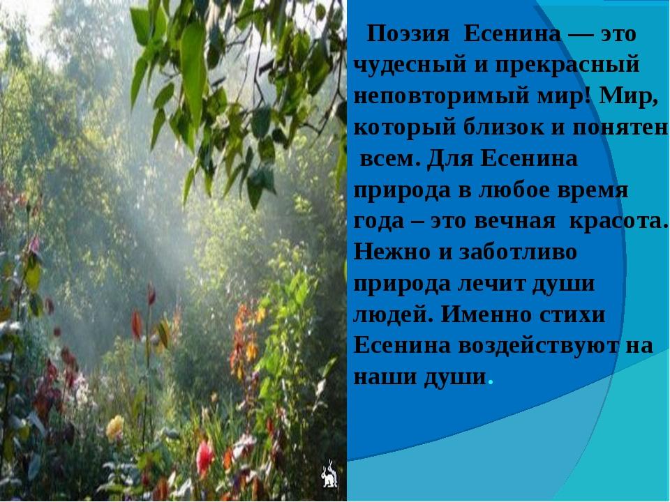 Поэзия Есенина — это чудесный и прекрасный неповторимый мир! Мир, который бл...