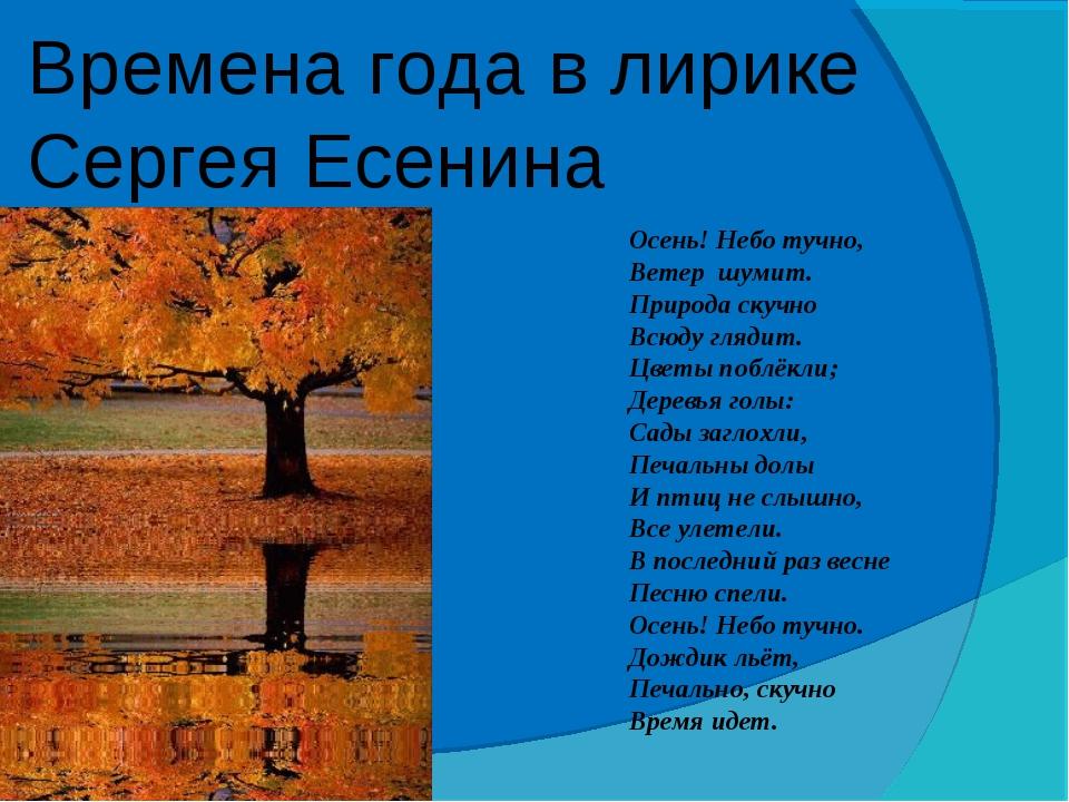 Времена года в лирике Сергея Есенина Осень! Небо тучно, Ветер шумит. Природа...