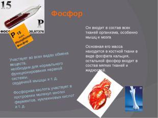 Фосфор Участвует во всех видах обмена веществ, необходим для нормального функ