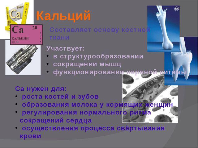 Кальций Составляет основу костной ткани Участвует: в структурообразовании сок...