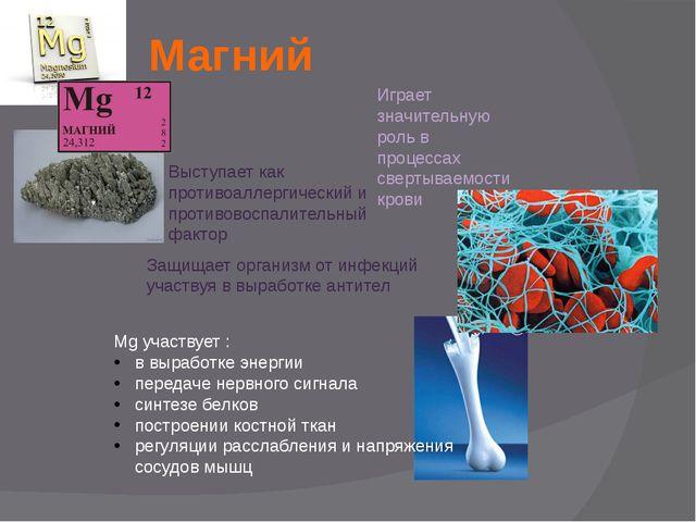 Магний Mg участвует : в выработке энергии передаче нервного сигнала синтезе б...