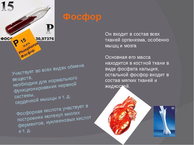 Фосфор Участвует во всех видах обмена веществ, необходим для нормального функ...