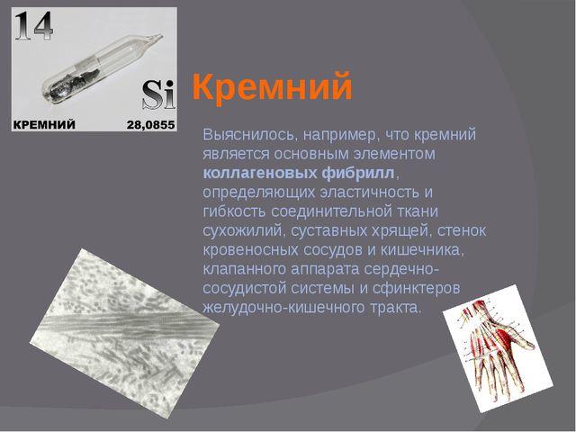 Кремний Выяснилось, например, что кремний является основным элементом коллаге...