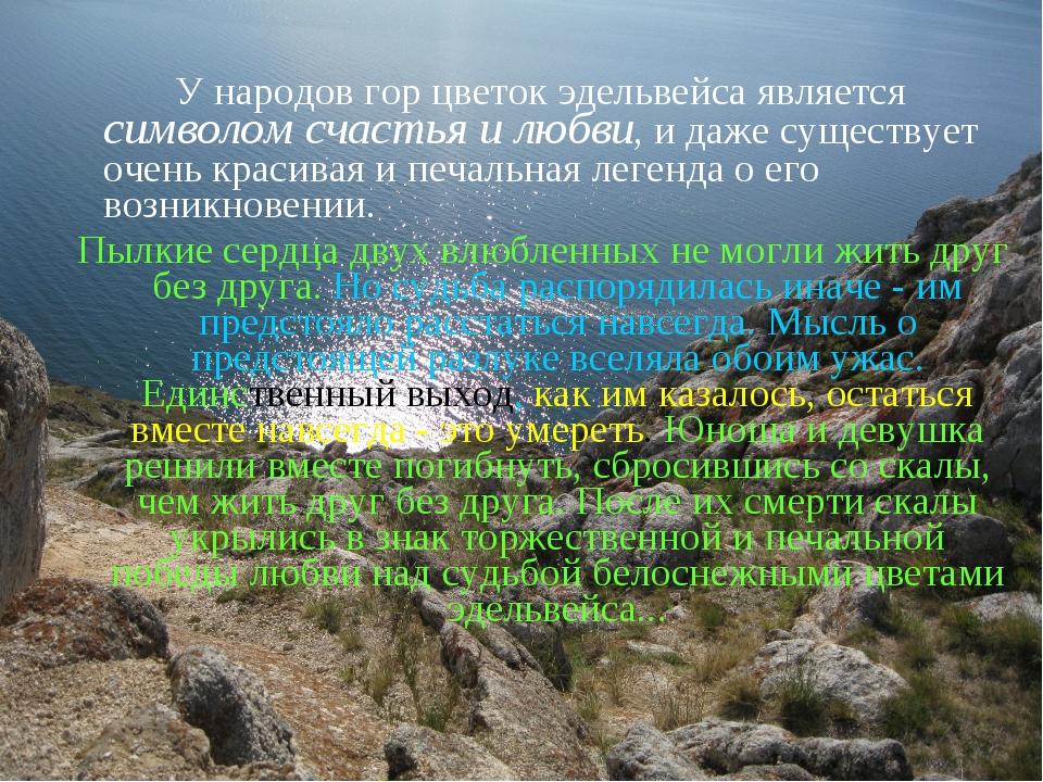 У народов гор цветок эдельвейса является символом счастья и любви, и даже су...