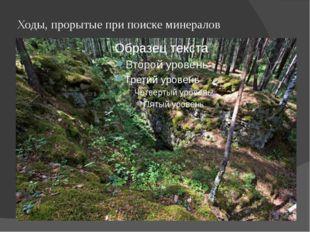 Ходы, прорытые при поиске минералов