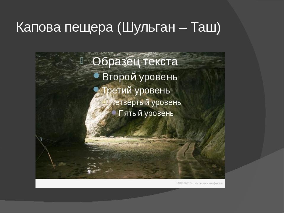 Капова пещера (Шульган – Таш)