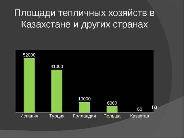 Площади тепличных хозяйств в Казахстане и других странах