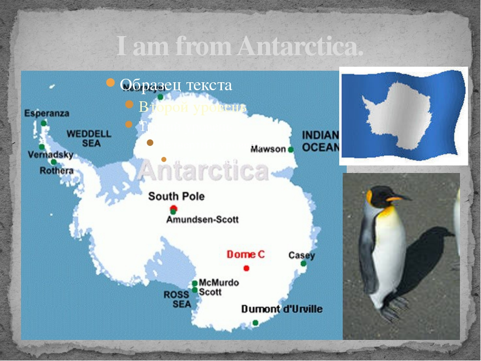 I am from Antarctica.