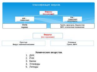 Классификация вирусов. Химические вещества. ДНК РНК Белки Углеводы Липиды Вир