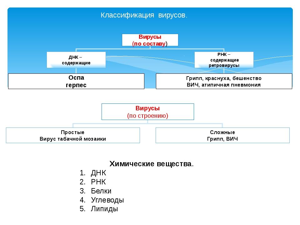 Классификация вирусов. Химические вещества. ДНК РНК Белки Углеводы Липиды Вир...