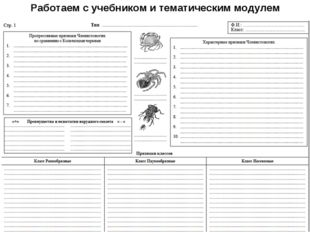 Работаем с учебником и тематическим модулем