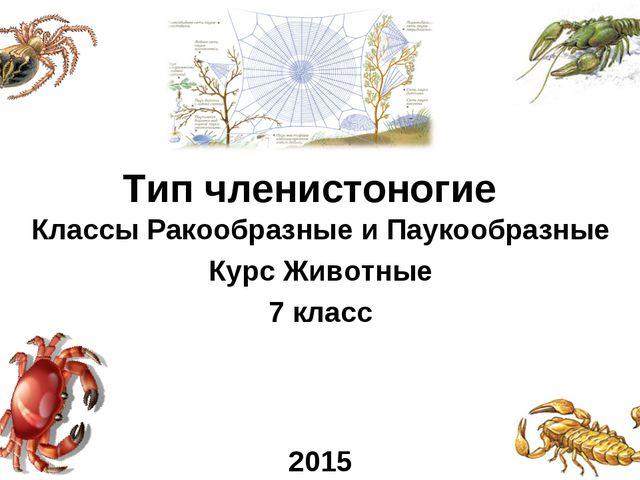 Классы Ракообразные и Паукообразные Курс Животные 7 класс 2015 Тип членистоно...