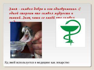 Змея - символ добра и зла одновременно. С одной стороны это символ мудрости и