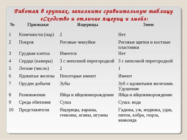 Работая в группах, заполните сравнительную таблицу «Сходство и отличие ящериц...