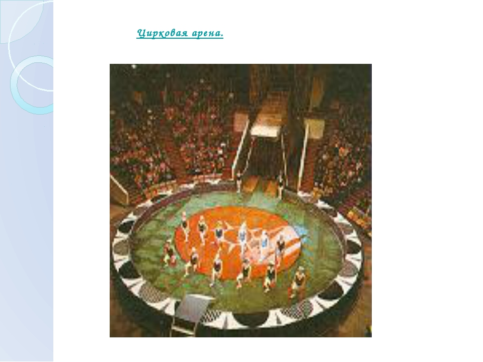 Цирковая арена.