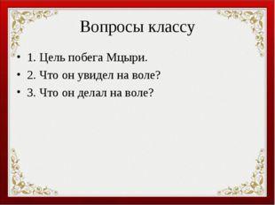 Вопросы классу 1. Цель побега Мцыри. 2. Что он увидел на воле? 3. Что он дела