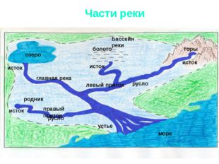 Части реки исток озеро болото горы родник море Бассейн реки исток устье исток