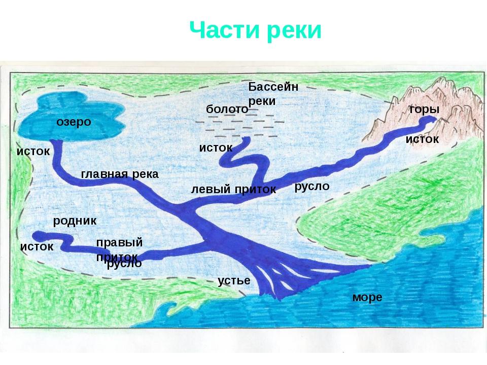 Части реки исток озеро болото горы родник море Бассейн реки исток устье исток...